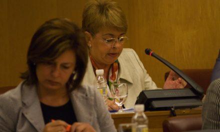 La oposición anuncia que presentará alegaciones al reglamento del IMIS