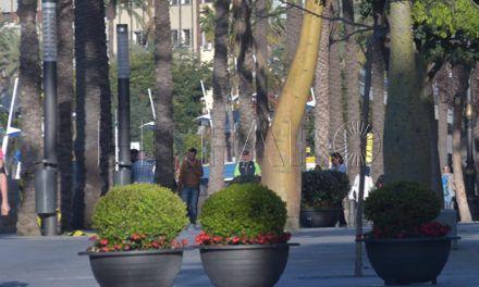 """Hachuel acusa de """"demagogia"""" por el  gasto previsto en plantas"""