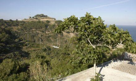 Medio Ambiente colaborará con el RAMIX 30 en la repoblación de dos parcelas en el monte Hacho