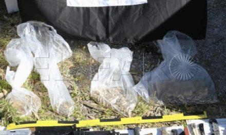 Las armas halladas en el zulo radical no se usaron en España