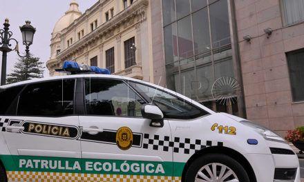 La Ciudad apuesta por los vehículos eléctricos sostenibles