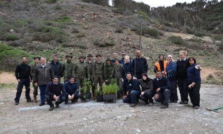 Casi un centenar de militares repobló dos parcelas del Monte Hacho