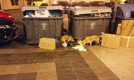 Perros asilvestrados provocan ataques en Hacho y San Antonio