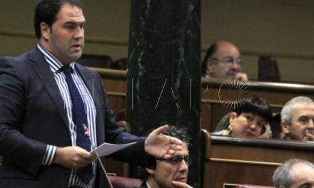 Un senador de Bildu pide las imágenes del intento de salto del 1 de enero