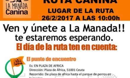 Manada Canina convoca una nueva ruta de perros con sus propietarios