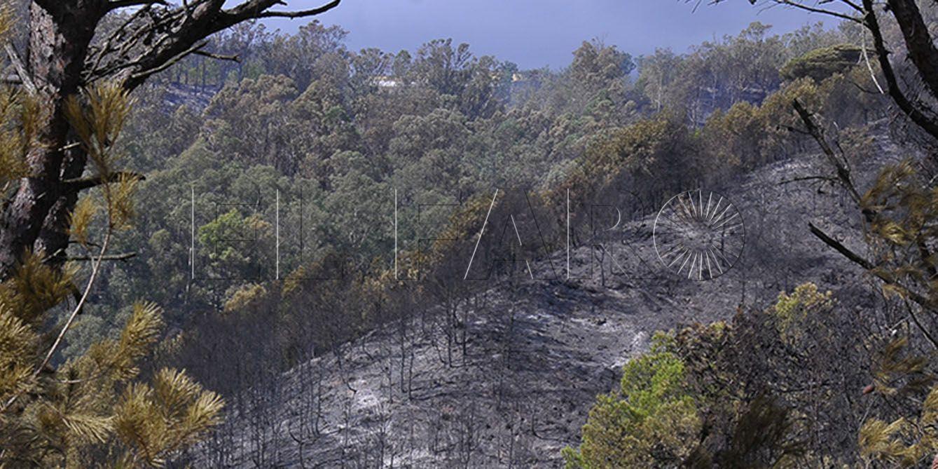 Obimasa busca ayudas estatales para el Monte de la Tortuga