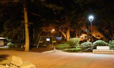 Cerrados los Jardines de la Argentina al caer un árbol centenario