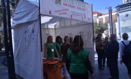 La vida saludable protagonista  en el Día Mundial del Riñón