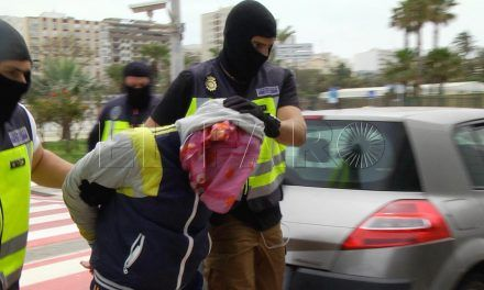 Nuevo golpe al terrorismo