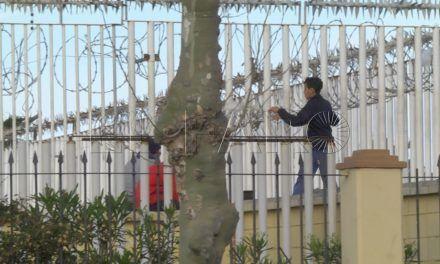 La Policía Portuaria dispersa a menores y argelinos del puerto