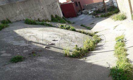 La calle Este del Príncipe pide solución a cortes de agua, vertederos y plagas
