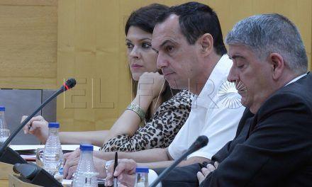 El PSOE seguirá asistiendo a los plenos