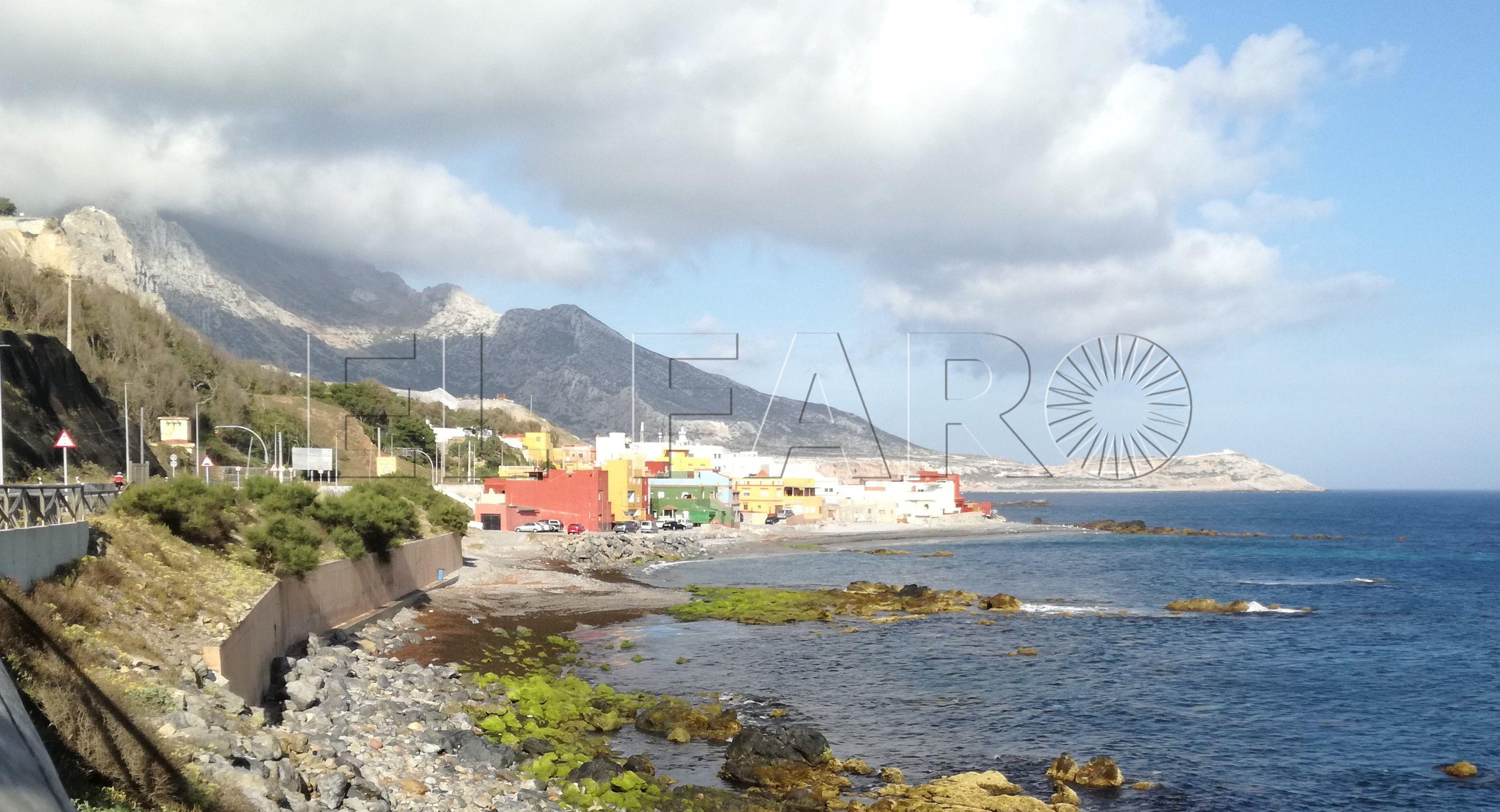 La Ciudad encargará a Tragsa la retirada de algas de la bahía norte