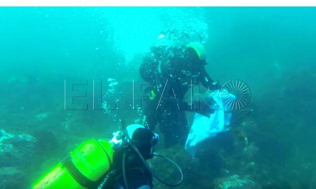 La FDASDC y CECAM organizan  una limpieza de fondos marinos