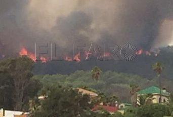 Ramos puede rebajar la sanción por el incendio en 'La Tortuga'