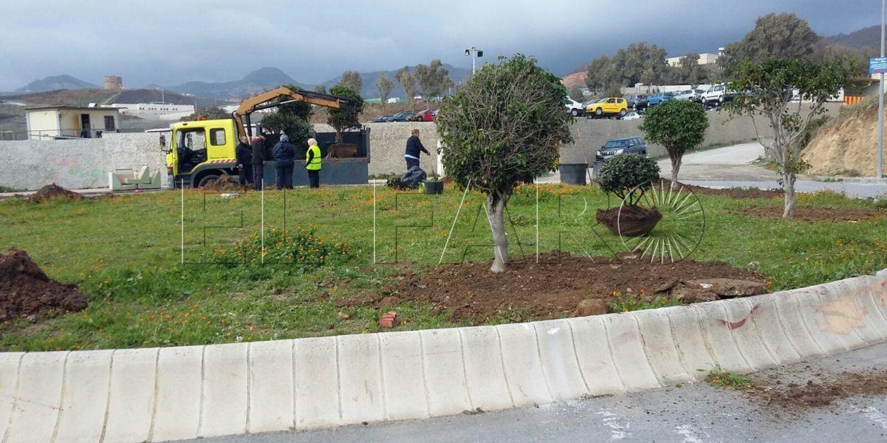 FOTOS | Tareas de limpieza en Puente Quemadero y repoblación vegetal en el Príncipe