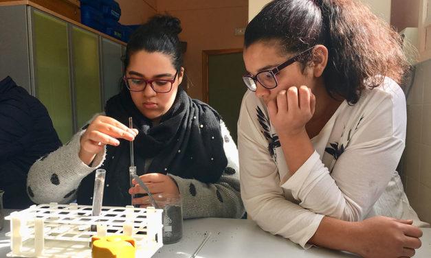 Día de la mujer científica: ¿Y además de Marie Curie…?
