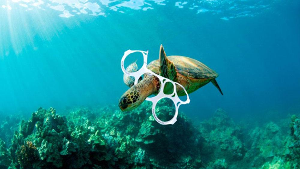 Tortugas, víctimas de una atracción fatal por el plástico ...
