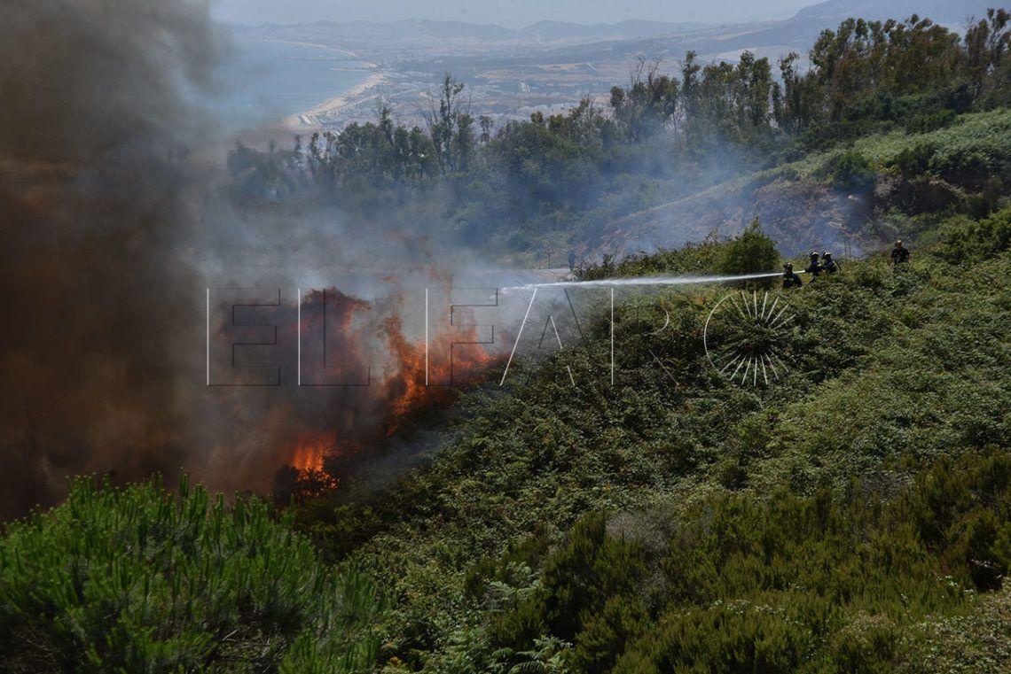 Las imágenes del incendio que ha arrasado García Aldave