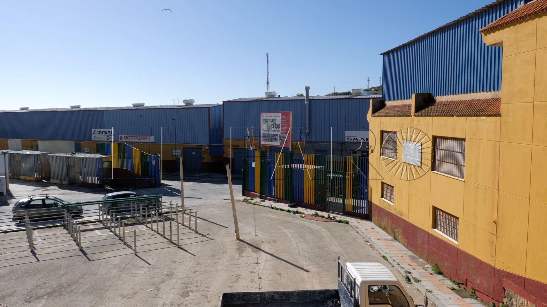 Frontera 55